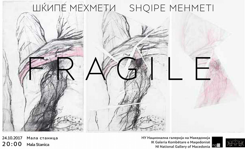 shkipe mehmeti poster